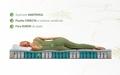 Saltea Aloe Vera Memory Pocket 7 zone, Husa Aloe Vera, Super Ortopedica, Anatomica, 80x190 cm