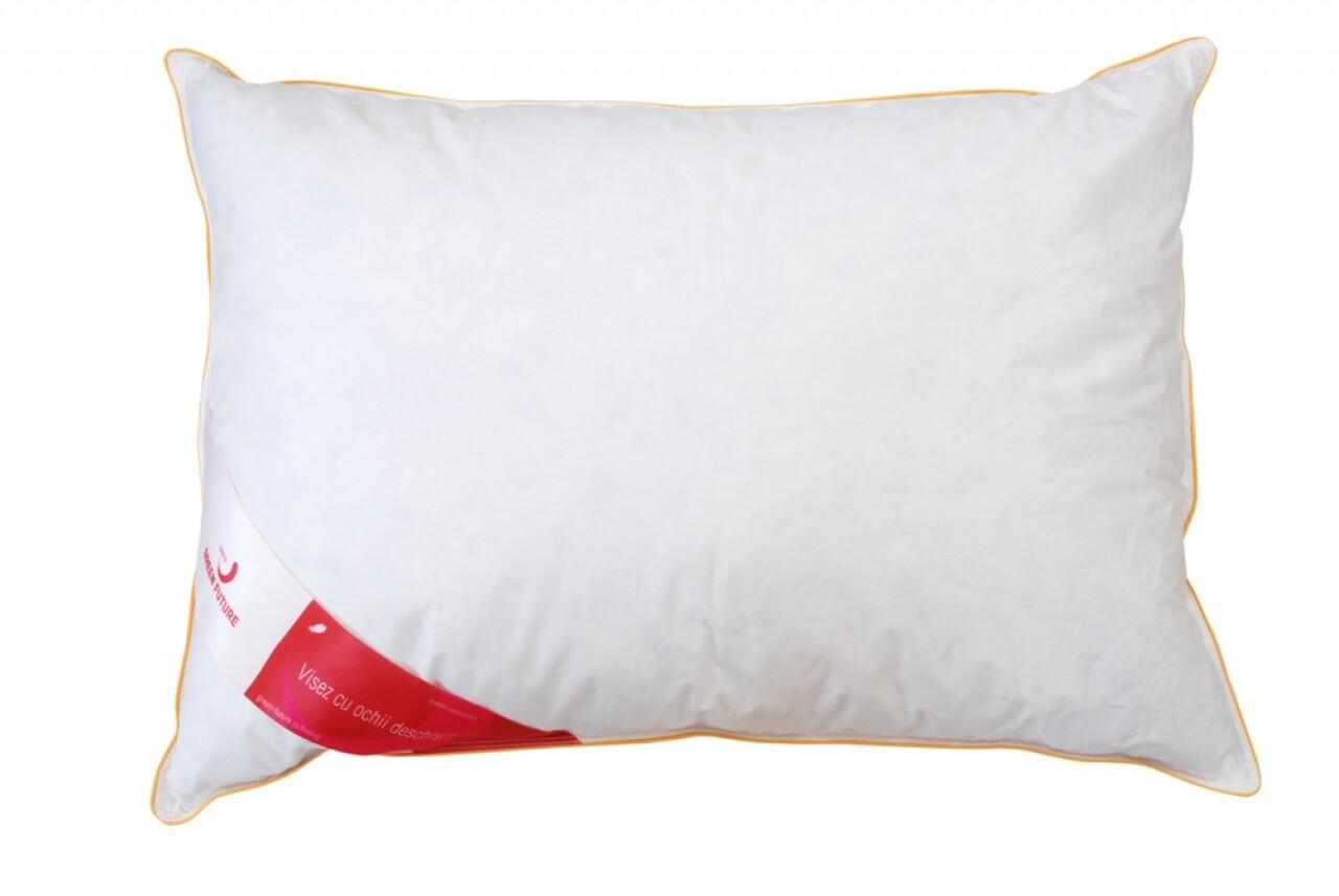 Pernă Feeling 10 50x70 cm - Puf de gâscă 10%, pană mică de gâscă 90%