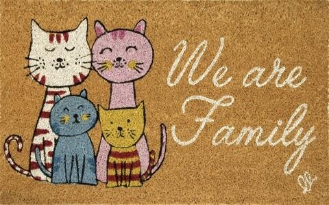 Covoras de intrare, Olivio Tappeti, Fantasy 8, Family, 40x 65 cm, fibra cocos, multicolor